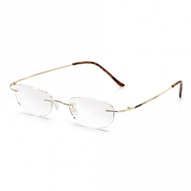 Read Optics Mens and Womens Gold Memory-Flex Rounded Square Reading Glass